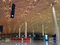 天花板的起源与发展